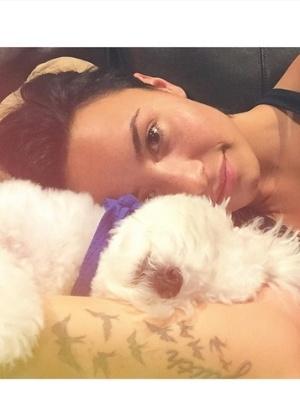 """Demi Lovato revela que seu cachorro morreu em """"trágico acidente"""""""